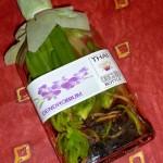 L'orchidée de Thaïlande